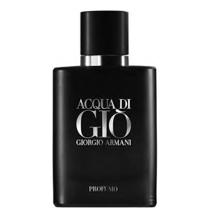 ARMANI ACQUA DI GIO 40ML